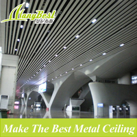 Decorative Aluminum Material Curtain Ceiling