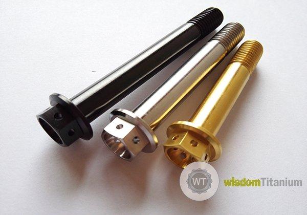 titanium caliper bolt M10 J1.1
