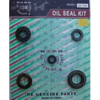 XR-250 Oil seal Set