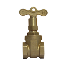 Lock shield valve
