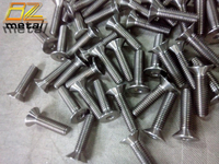 Titanium Countersunk Bolts