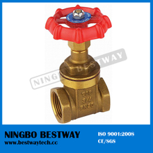 Brass Chain Wheel Gate Valve Hot Sale in China (BW-G05)