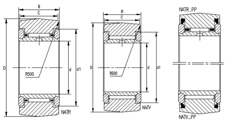 NATR,NATV…PP Needle Roller Bearing
