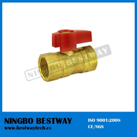 5/8 Inch Brass Angle Gas Ball Valve Flare Flare (BW-USB05)