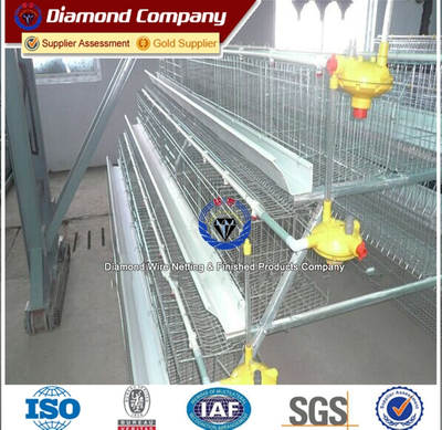 A type 96hens Hot-dipped Galvanized Chicken Cage