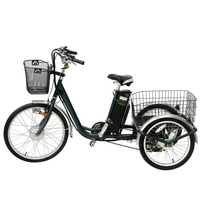 Chinese Economic Cargo Electric Tricycle for Sale with Pedal Basket