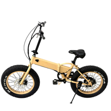 High Qyality 350W Folding E-Bike Disk Brake Electric Bicycle Lithium Battery Brushless Motor with En 15194 Approval