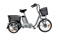 "20"" 3 Wheel Adult Electric Cargo Tricycle with Cabin"