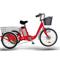 24 inch steel frame electric tricycle with big rear cargo
