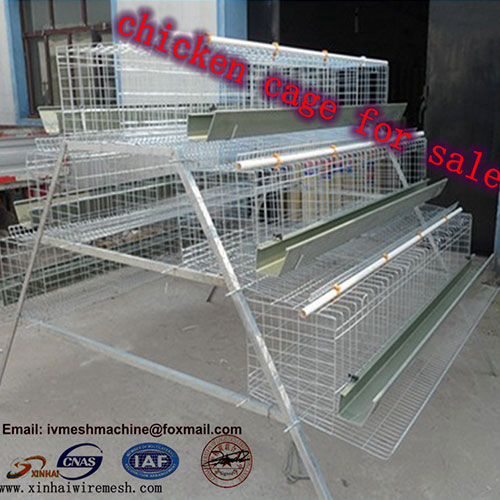 Poultry Chicken Cage