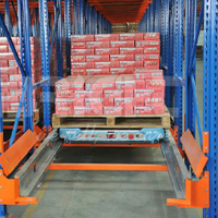Warehouse Shuttle Shelves